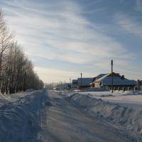 Село Бакалы, улица Костина (1), Бакалы