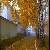 Золотая аллея (Gold avenue), Белорецк