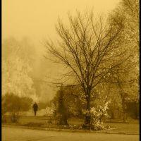Осеннее настроение (Autumn mood), Белорецк