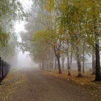 Утро. Туман. 10.10.2010., Благовещенск
