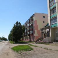 ул. Бр. Першиных / Br. Pershinykh Str., Благовещенск