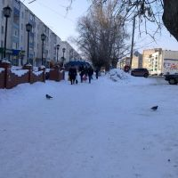 Улица Седова, Благовещенск