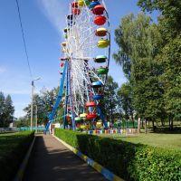Колесо в парке отдыха, Верхнеяркеево