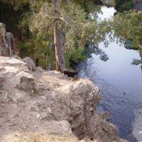 У Табунного моста, Зилаир