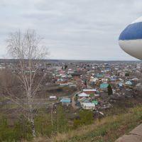 Кушнаренково (3нояб2012), Кушнаренково
