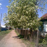 Переулок Деповской, Раевский
