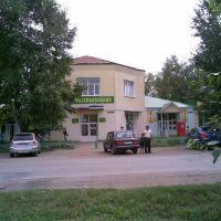 Россельхозбанк, Раевский