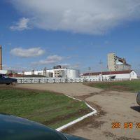 Сахарный завод, Раевский