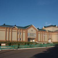 Дворец культуры, Стерлибашево