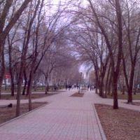 Аллея Проспект Ленина, Стерлитамак