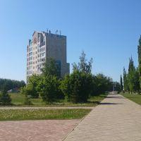 ул. Мичурина, многоэтажка № 14 возле ЦПКиО, Туймазы