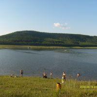 Вид с левого берега, Шаран