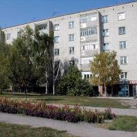 дом напротив пожарки, Алексеевка