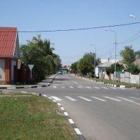 пересечение улиц К. Маркса и Некрасова, Алексеевка