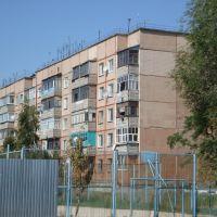 пятиэтажный дом 31 ул Урицкого, Алексеевка