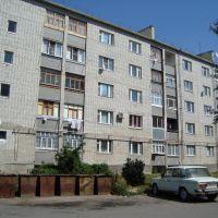 дом возле налоговой инспекции, Алексеевка