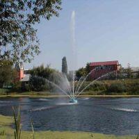 фонтан на реке Тихая Сосна, Алексеевка