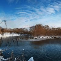 Ледяной оазис., Белгород