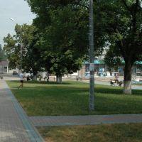 Borisovka_center, Борисовка