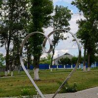 Сердце, Вейделевка