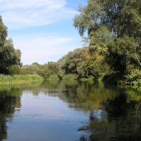 Любимая речка Оскол, Волоконовка