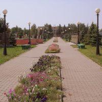 Волоконовский бульвар, Волоконовка