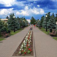 Бульвар 2013, Волоконовка