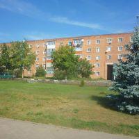 Центр поселка, Волоконовка