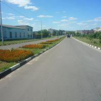 улица, Волоконовка