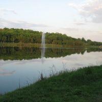Городской пруд, Губкин