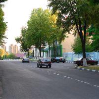 Улица Ленина, Губкин