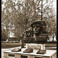 Памятник Афганцам, Губкин