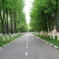 ул. Советская, Губкин