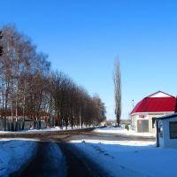 Улица Космонавтов, Ивня