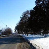 Дорога возле санатория, Ивня