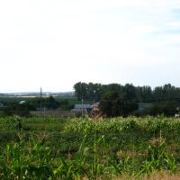 Пейзаж, Ивня