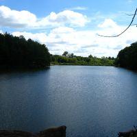 Вид на пруд с дерева, Ракитное