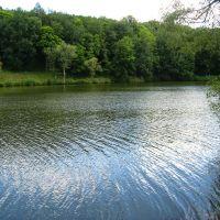Зеркальный пруд, Ракитное
