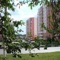 Вид с ул. Октябрской на дом 24 (дальше который) по ул. Мира, Строитель