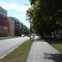 улица Кривошеина, Строитель