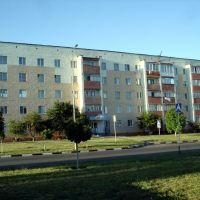 ул. Ленина - 19, Строитель