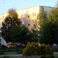 ул. Ленина 13а, Строитель