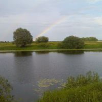 река Десна, Белая Березка