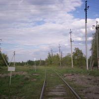 дорога не в Дудорово, Большое Полпино