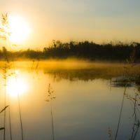 Lake sunrise / Восход на озере, Большое Полпино