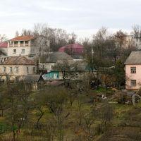 В овраге у Дивизиона, Брянск