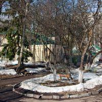 Тайный двор, Брянск