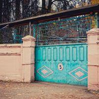 Ворота Электроаппарата, Брянск