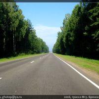 2006, трасса M13. Брянск—Гомель. за 600м до границы РФ/РБ, Вышков