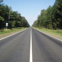 Дорога в Россию, Вышков